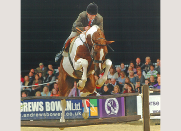 horse-of-the-year-show-2014